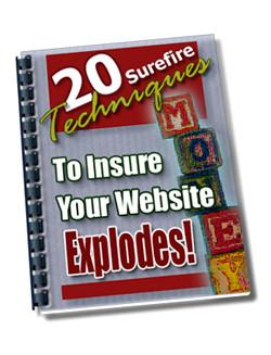 20 Tecnicas Seguras Para Posicionar su Sitio Web