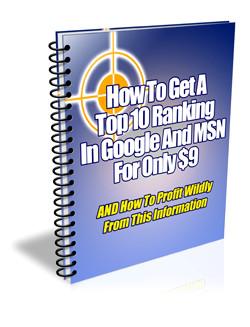 Como Obtener una Clasificacion Alta en Google y MSN