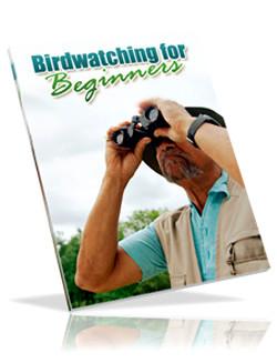 Observacion de Aves Para Principiantes